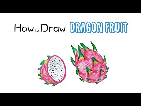 How to Draw a Dragon Fruit