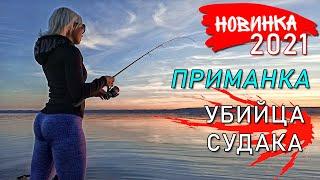 НЕПРИЛИЧНО МНОГО СУДАКА - ВОТ ЭТО НОВИНКА! Рыбалка на спиннинг 2021! Ловля судака осенью на джиг