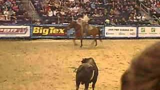 PRB winnipeg, bull goes crazy.