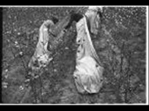 Bessie Brown Song From A Cottonfield (BRUNSWICK 4409) (1929)