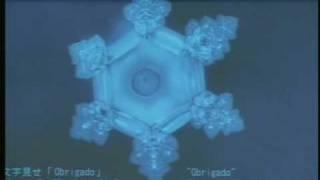 Mensagem da água (LINDO): palestra de Masaru Emoto -  (Nova Consciência) thumbnail
