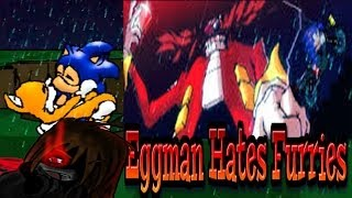 Let's Insanely Play Eggman Hates Furries