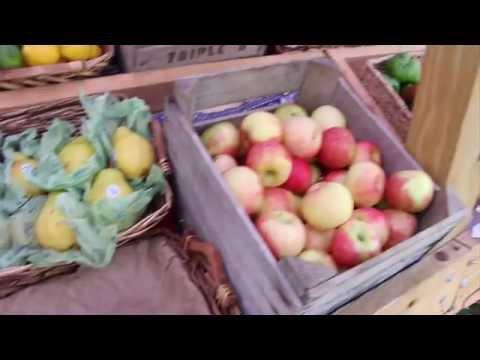 Food Studies Alumni Profile: Dylamato's Market:
