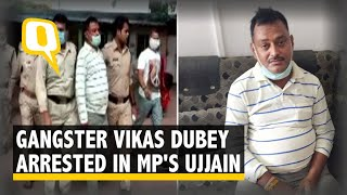 Kanpur Encounter: UP Gangster Vikas Dubey Arrested in MP's Ujjain