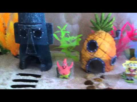 how to make a hut with coconut shell fish tank