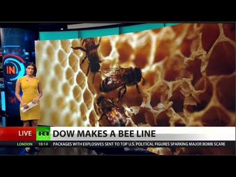 Dow AgroSciences Accelerates Bee Collapse