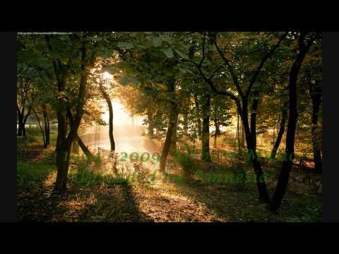 Leon Bolier - YE ( Airbase Remix ) [HD]