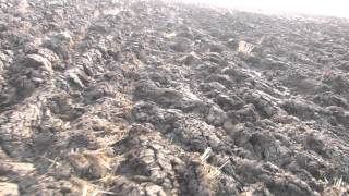 Весенняя охота 2015 Приморский край эпизод 5(Это видео создано с помощью видеоредактора YouTube (http://www.youtube.com/editor), 2015-04-13T11:19:17.000Z)