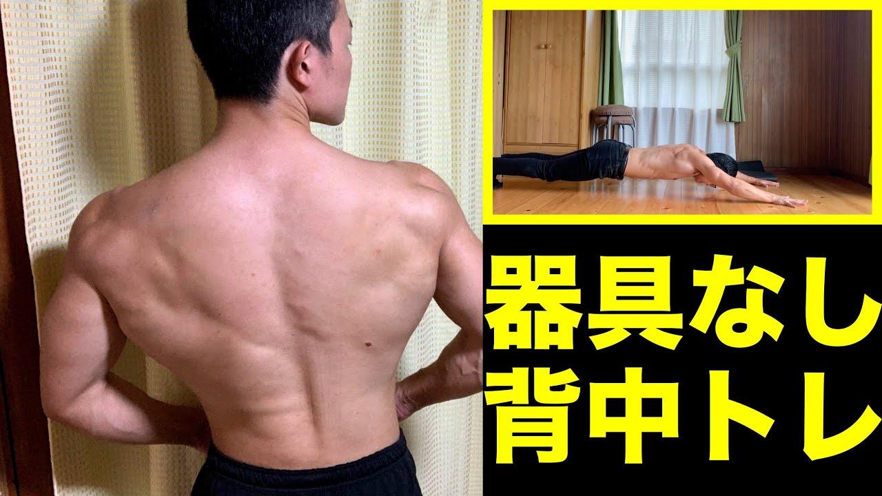 【背中の自重筋トレ】器具なし!自宅で広背筋を鍛えよう!【5分でわかる】