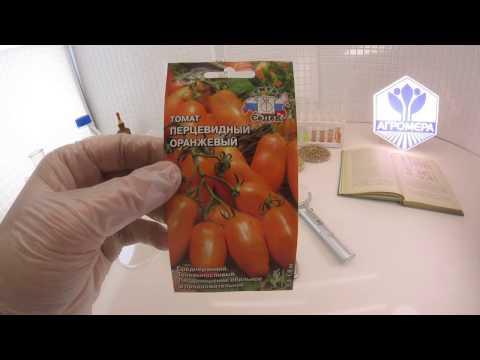 Томат Перцевидный оранжевый. СеДеК