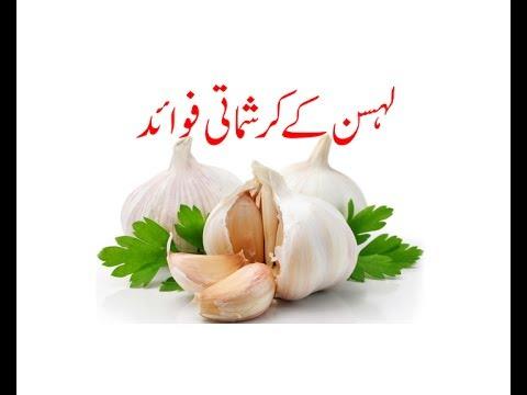 Garlic Lehsan Health Benefits urdu/hindi/lahsan ke fayde/lehsan khane ke faidy
