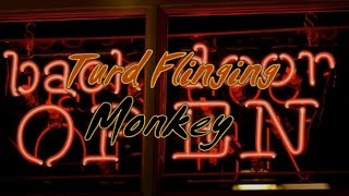 At The Back Door with Turd Flinging Monkey (interview)