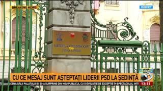 Cu ce mesaj sunt așteptați liderii social-democrați la CEx-ul crucial pentru PSD