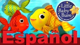 Contar peces   Canciones infantiles de números   LittleBabyBum