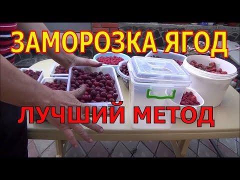 Заморозка ягод. Проверенный годами метод.