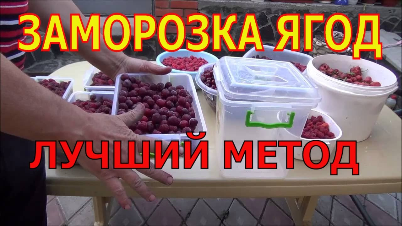 Компот из замороженных ягод: как приготовить Проверенные рецепты компотов