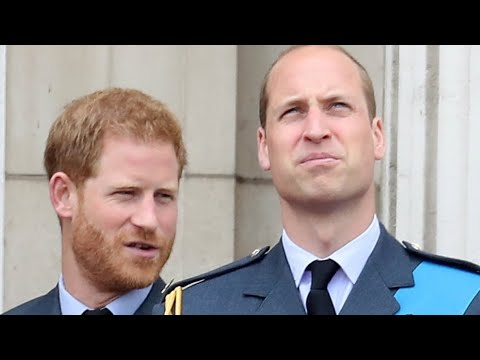 The Truth About Prince William And Prince Harry's Feud Revealed