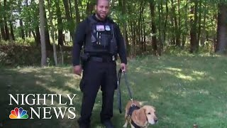 Inside The Secret Service's New K-9 Training Facility | NBC Nightly News