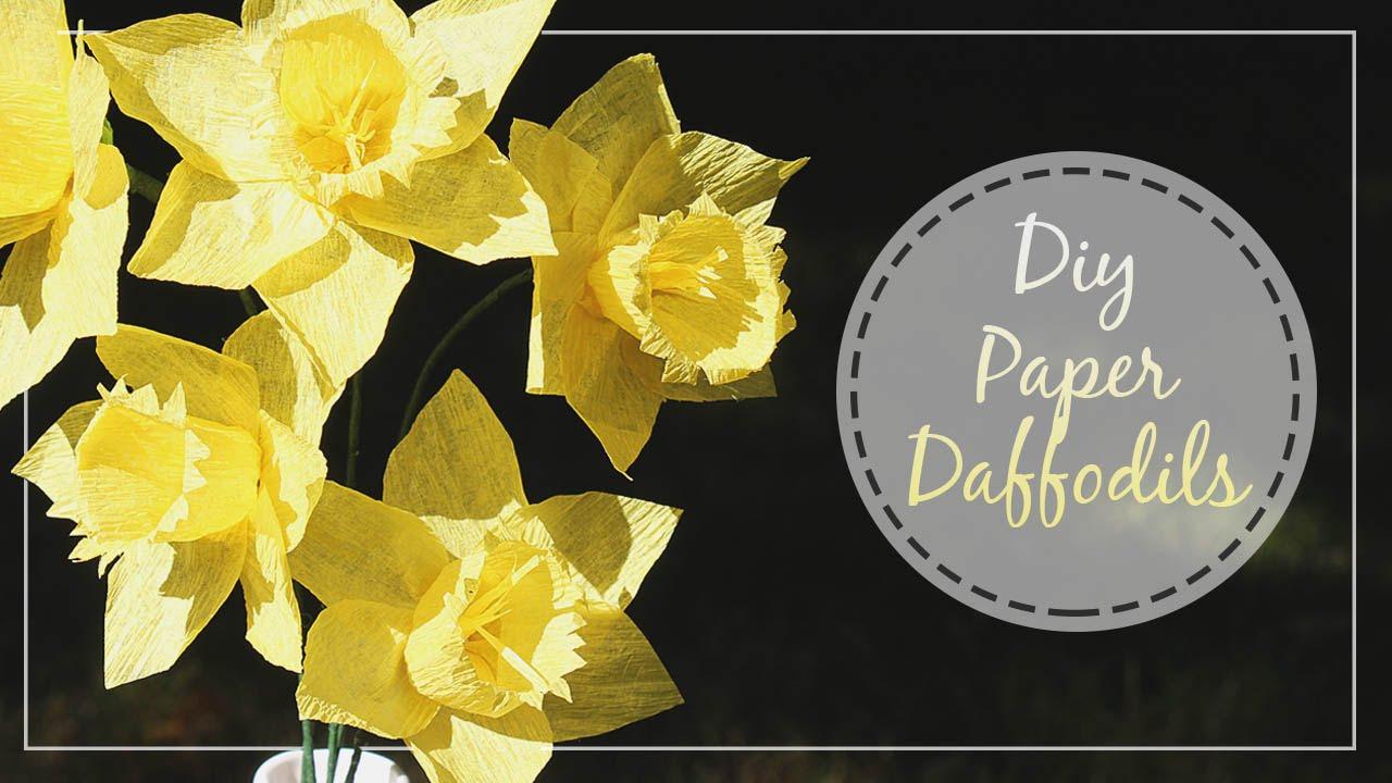 how to preserve cut daffodils