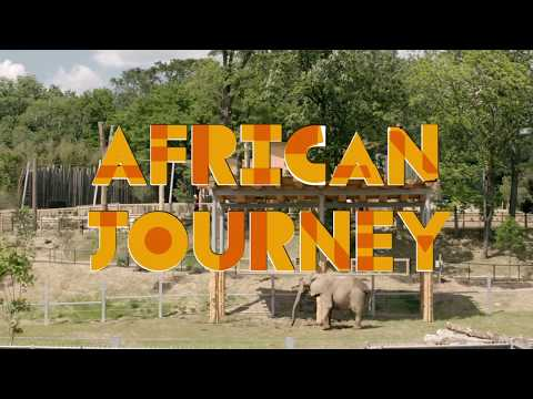 Experience the new African Journey