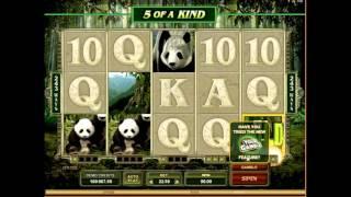 Игровой слот  Неукрощенная панда (untamed giant panda) - обзор от igrovye-avtomati.net(Видео обзор азартного игрового автомата Неукрощенная панда (untamed giant panda) от игрового сайта igrovye-avtomati.net...., 2016-02-19T10:19:00.000Z)