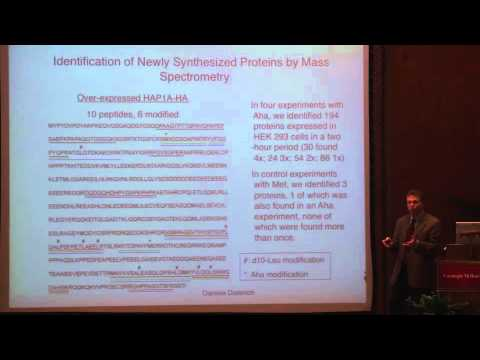 Reinterpreting the Genetic Code - 2010 Dickson Prize Lecture