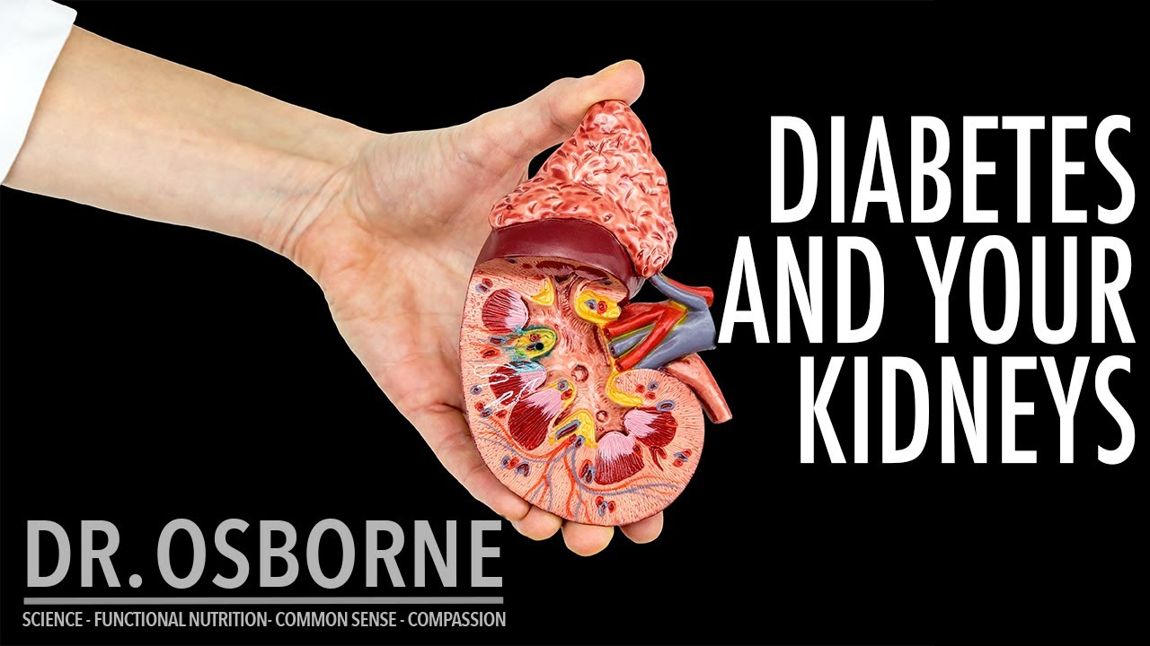 Diabetes and Your Kidneys - What Your Doctor May Never Tell You