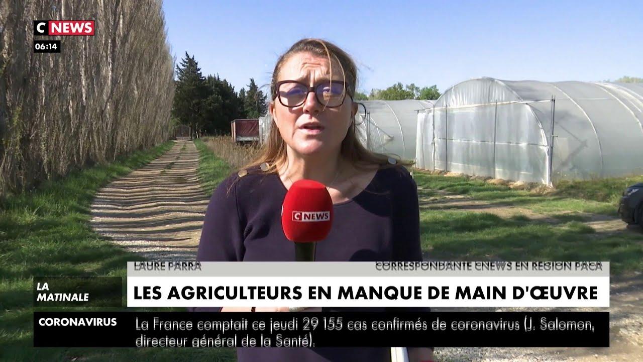 Les agriculteurs en manque de main d'oeuvre