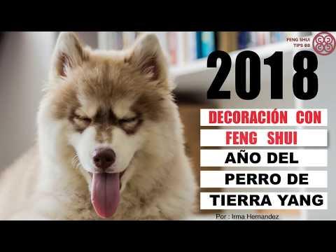 2018 AÑO DEL PERRO DE TIERRA - Monica Koppel | Doovi