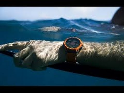 Best Sport Watches 2020 Best Smartwatch 2017 & 2020   Top 5 Waterproof Rugged Sport