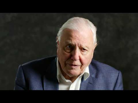 Sir David Attenborough | A message to world leaders