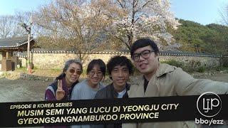 [Korea VLOG #8] Musim Semi Yang LUCU di Yeongju City - GyeongsangNambukdo Province Mp3