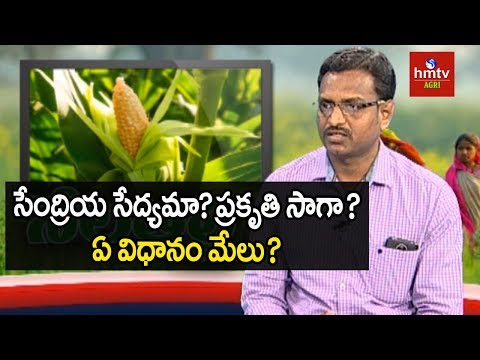 Natural Farming | Farmer Muralidhar Exclusive Interview | hmtv Agri
