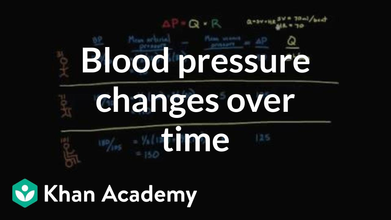 Pressures Rise As Pace Of Kindergarten >> Blood Pressure Changes Over Time Circulatory System Physiology