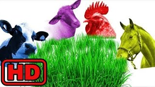 Kid -Kids -Farm Animal Eating Food And Changing Colors/Learn Colors And Animal Names/Zoo Wild Anima