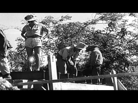 French forces build paths and recover old roads during Indochina war. HD Stock Footage