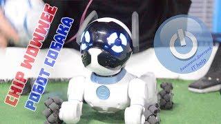 Chip WowWee, робот собака