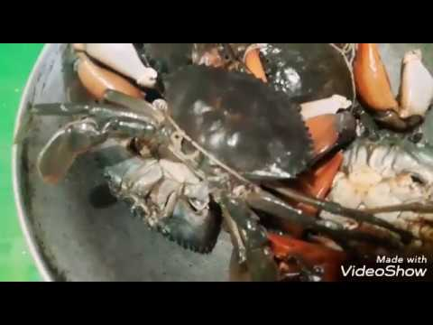 How to clean Crabs/ by Nita Rane