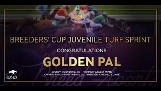 Vidéo de la course PMU BREEDERS' CUP JUVENILE TURF SPRINT