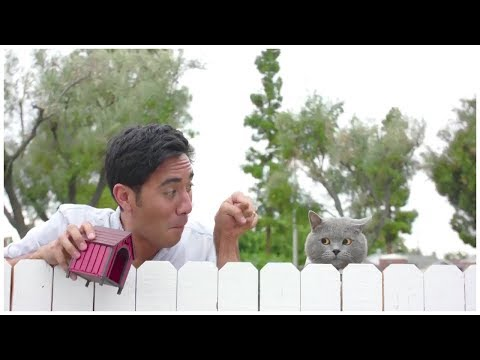 Top Zach King Magic Tricks 2017 - Best Halloween Magic Tricks Ever