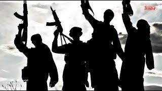 Reportaż: Europa synów Allaha