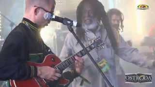 Congo Ashanti Roy & Pura Vida - Live @ OSTRÓDA REGGAE FESTIVAL 2014