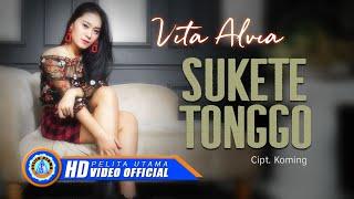 Download Vita Alvia - SUKETE TONGGO ( Official Music Video ) [HD]