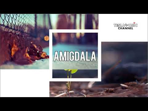 Amigdala - Kata Ibu Rindu