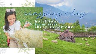 CINGJING VLOG | hotel tour + farm visit 酒店+清境農場