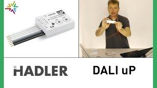 Lichtmanagement HADLER DALI uP [watt24-Video Nr. 119]