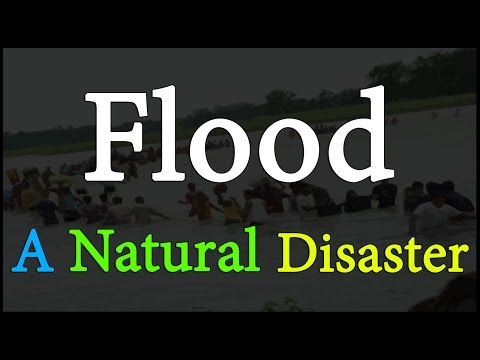Flood A Natural Disaster | Environmental Science | EVS | Letstute
