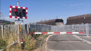 Abandoned Stoke Level Crossing Still Works!