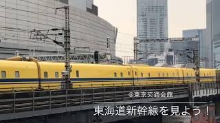 東京交通会館で東海道新幹線を見よう!