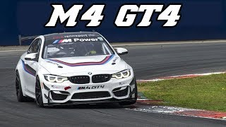 BMW F82 M4 GT4 - very loud exhaust and Downshifts (test at Zolder 2017)